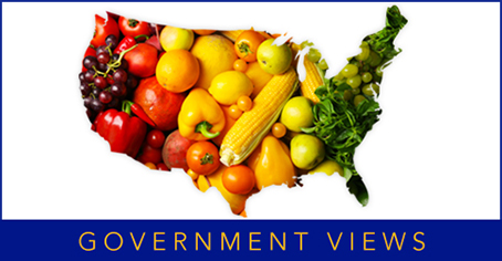 Government Views