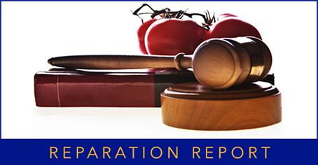 Reparation Report