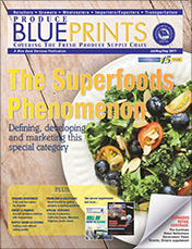 Blueprints Journal