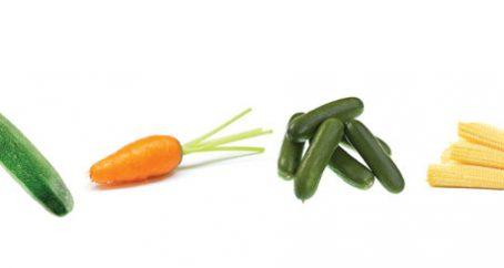Baby Vegetables Seasonal Chart