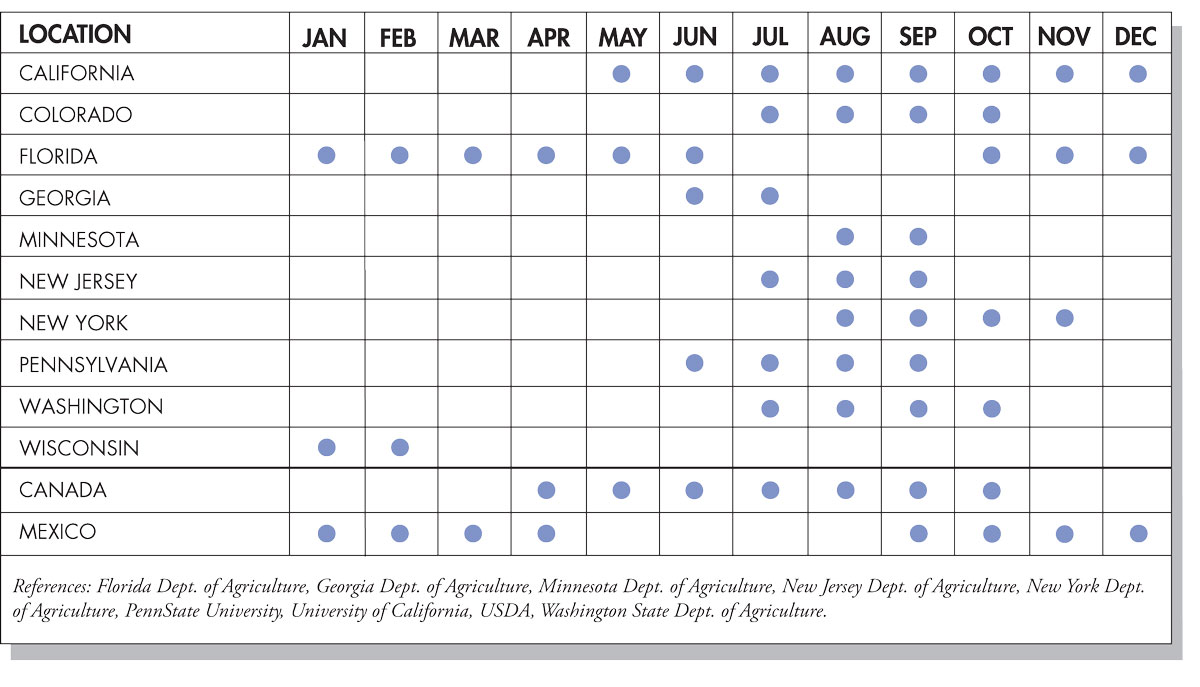Corn Seasonal Availability Chart