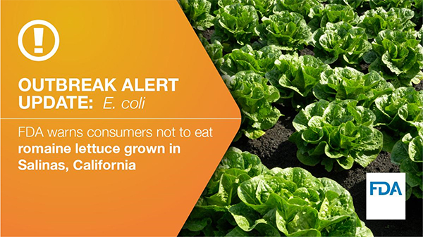 FDA romaine lettuce recall: E coli. outbreak traced to California