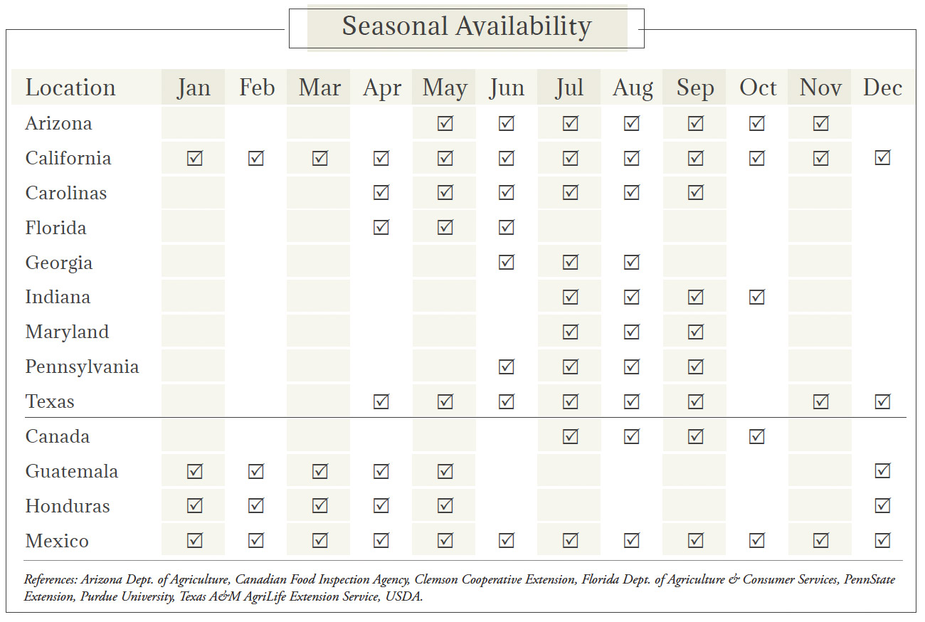 Cantaloupe Seasonal Availability Chart