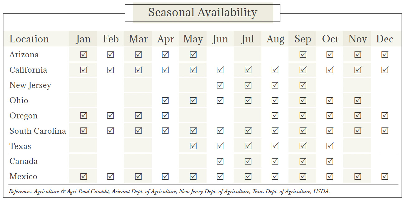Green Onions Seasonal Availability Chart