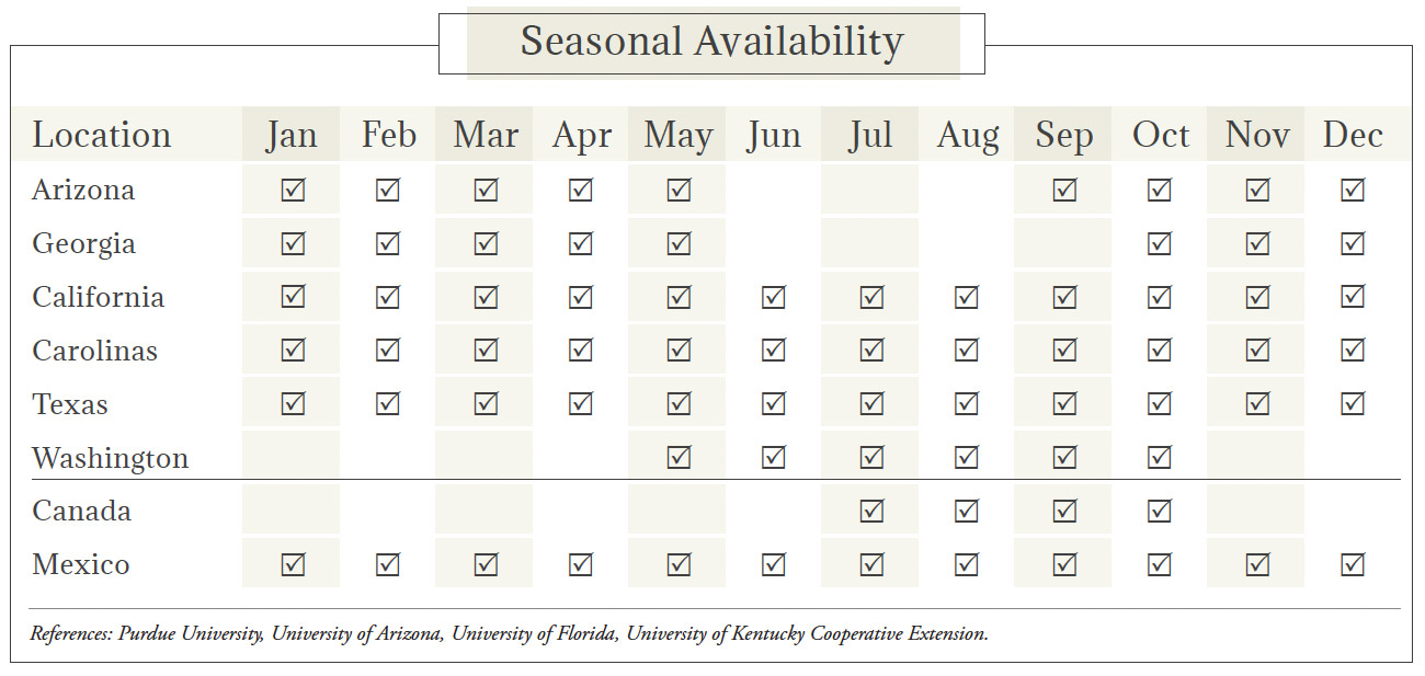Greens Seasonal Availability Chart