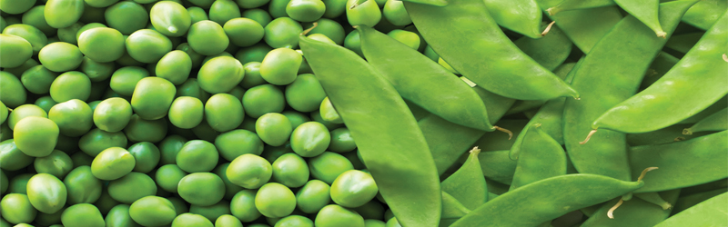 Peas and Snow Peas