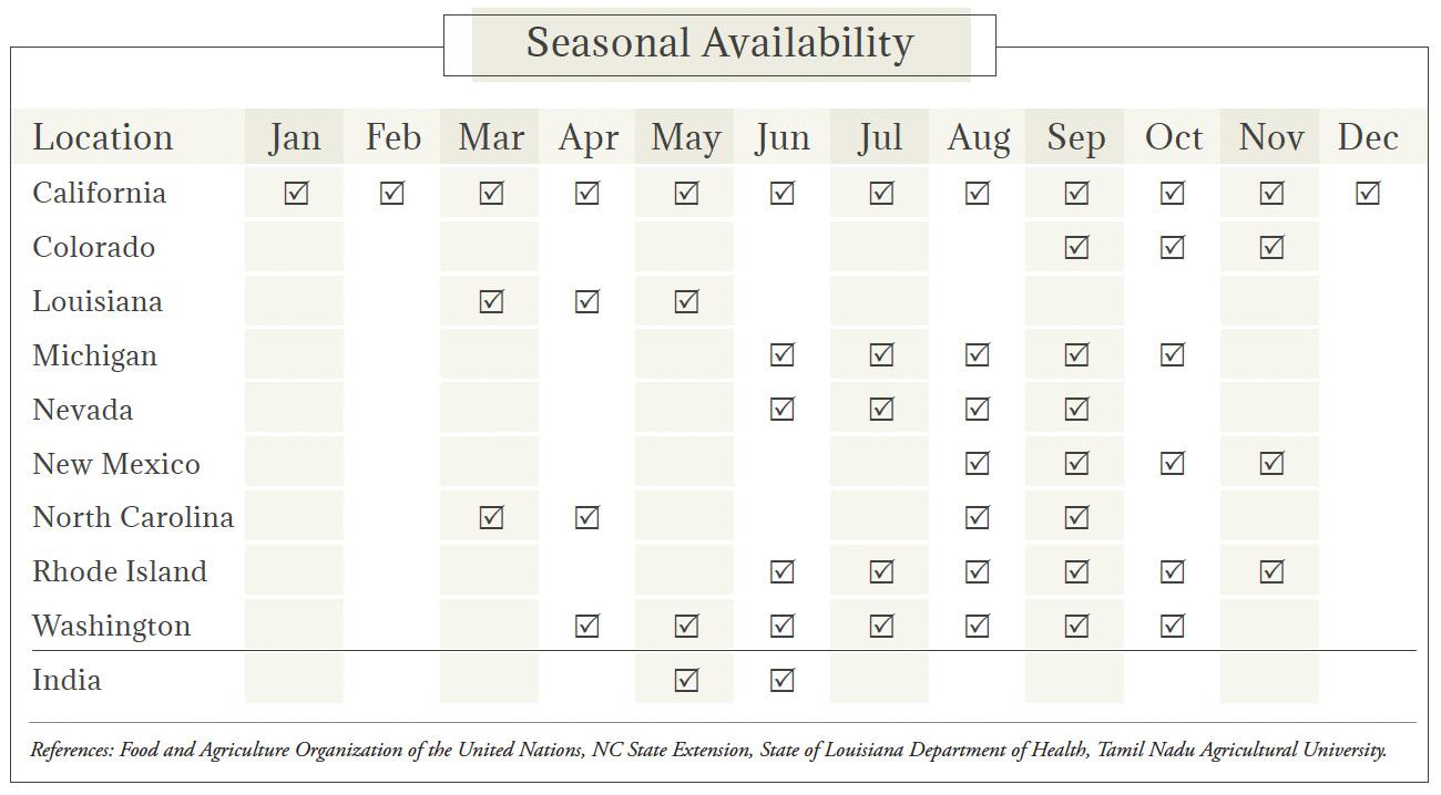 Fennel Seasonal Availability Chart