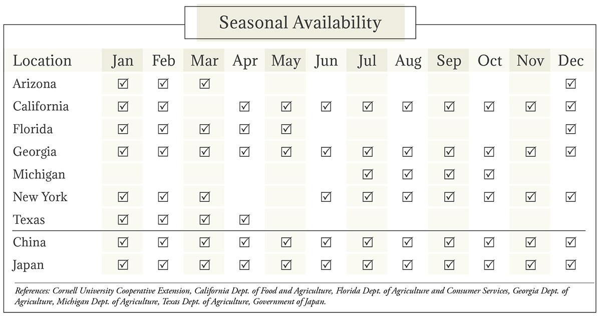 Napa Cabbage Seasonal Availability Chart