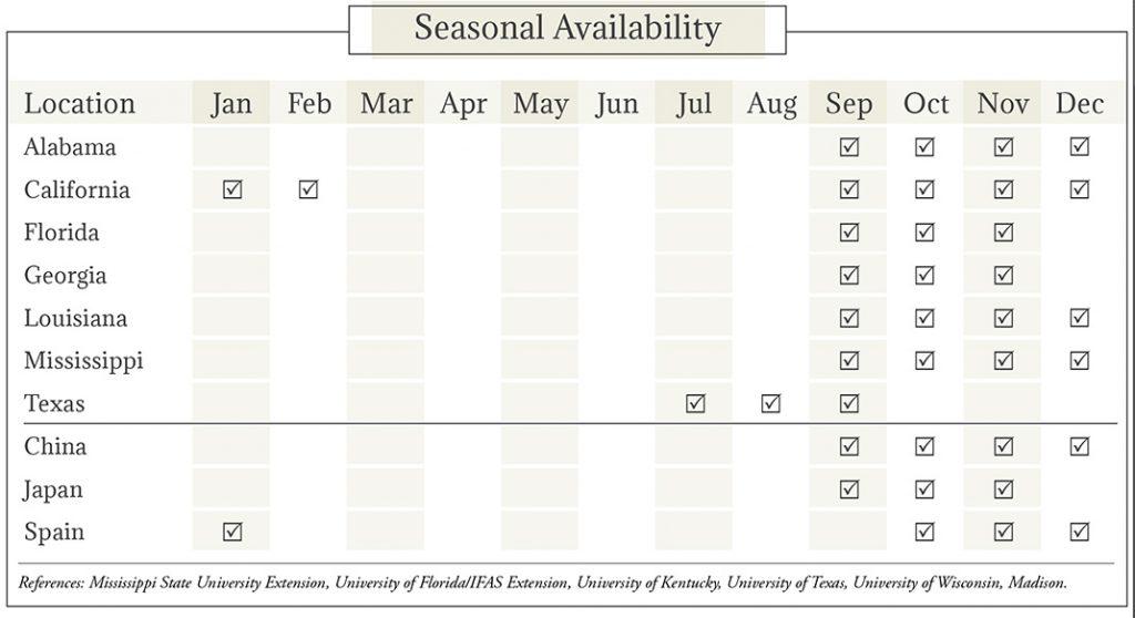 Persimmons Seasonal Availability Chart