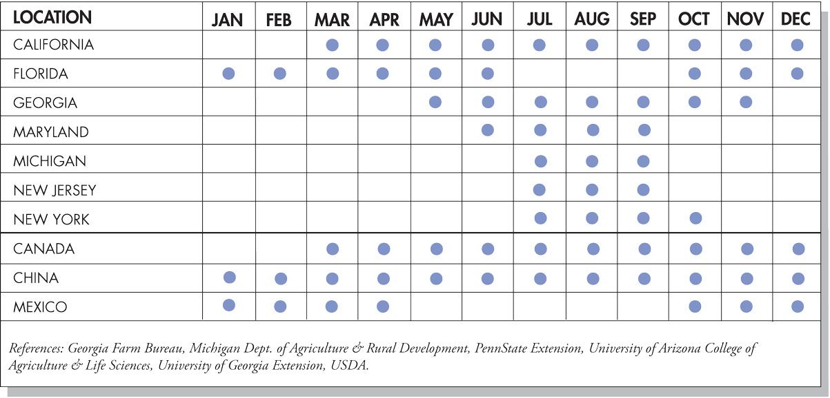Beans: Lima & Snap Seasonal Availability Chart