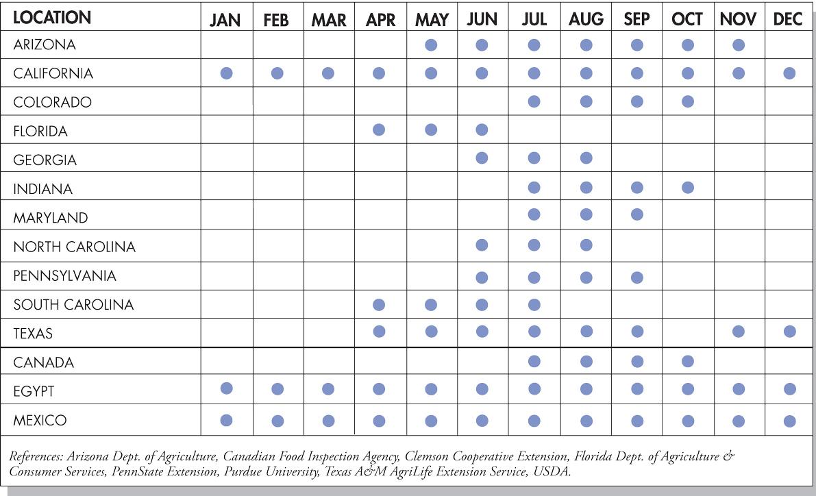 Cantaloupe Seasonal Availability Chart