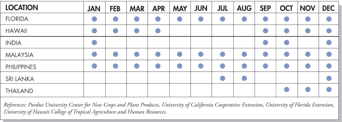 Carambola Seasonal Availability Chart