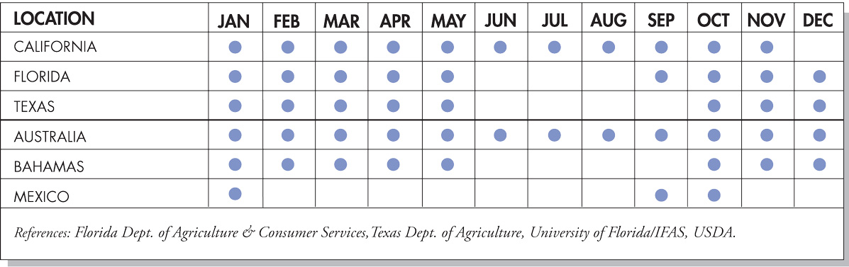 Grapefruit Seasonal Availability Chart