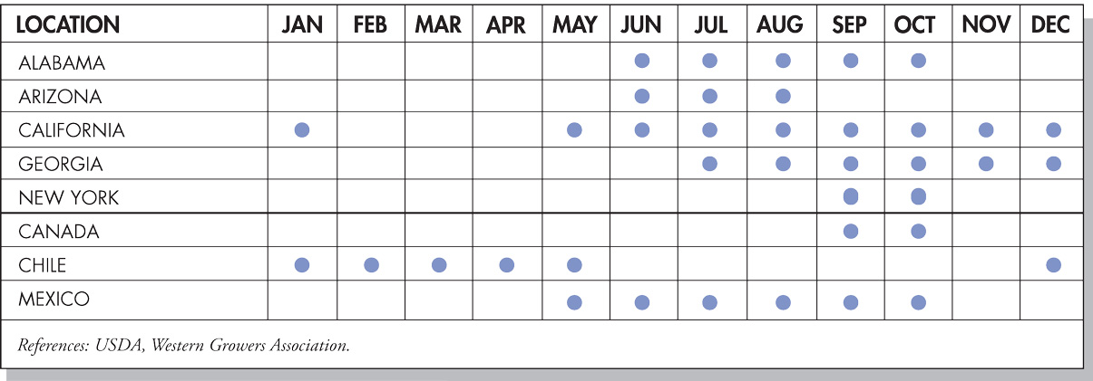 Grapes Seasonal Availability Chart
