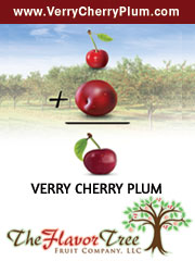 Very Cherry Plum